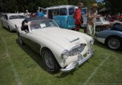 noosa_carshow_2016_043